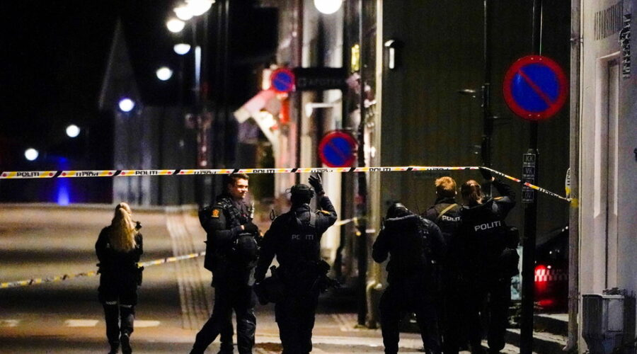 Bow and arrow attack kills and injures multiple people in Norway, terrorism not ruled out (PHOTOS)
