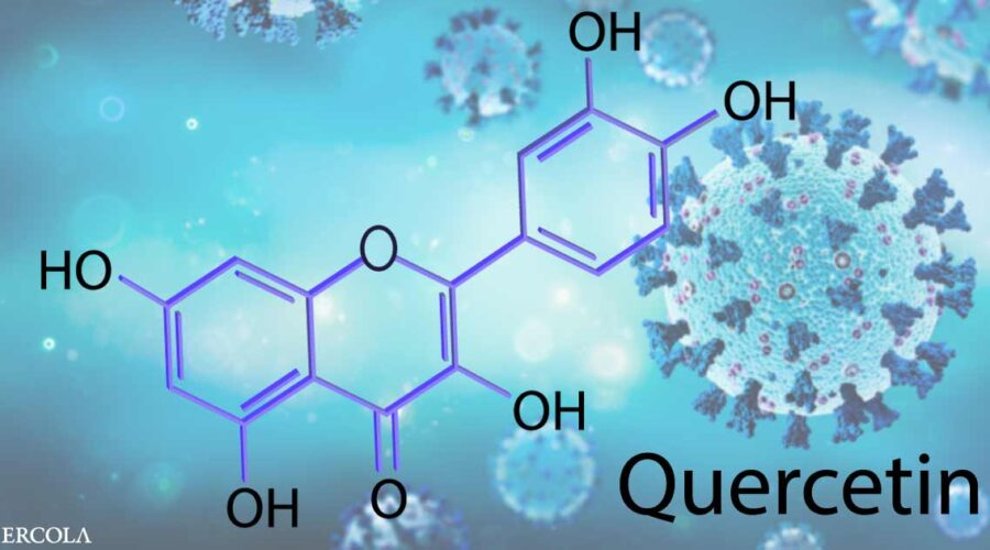 Two New Studies Show Quercetin Improves COVID Outcomes