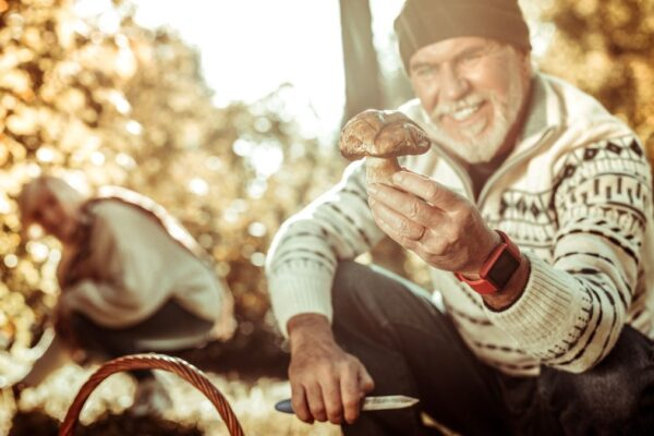 Which U.S. Counties Are the Finest for Mushroom Foraging?
