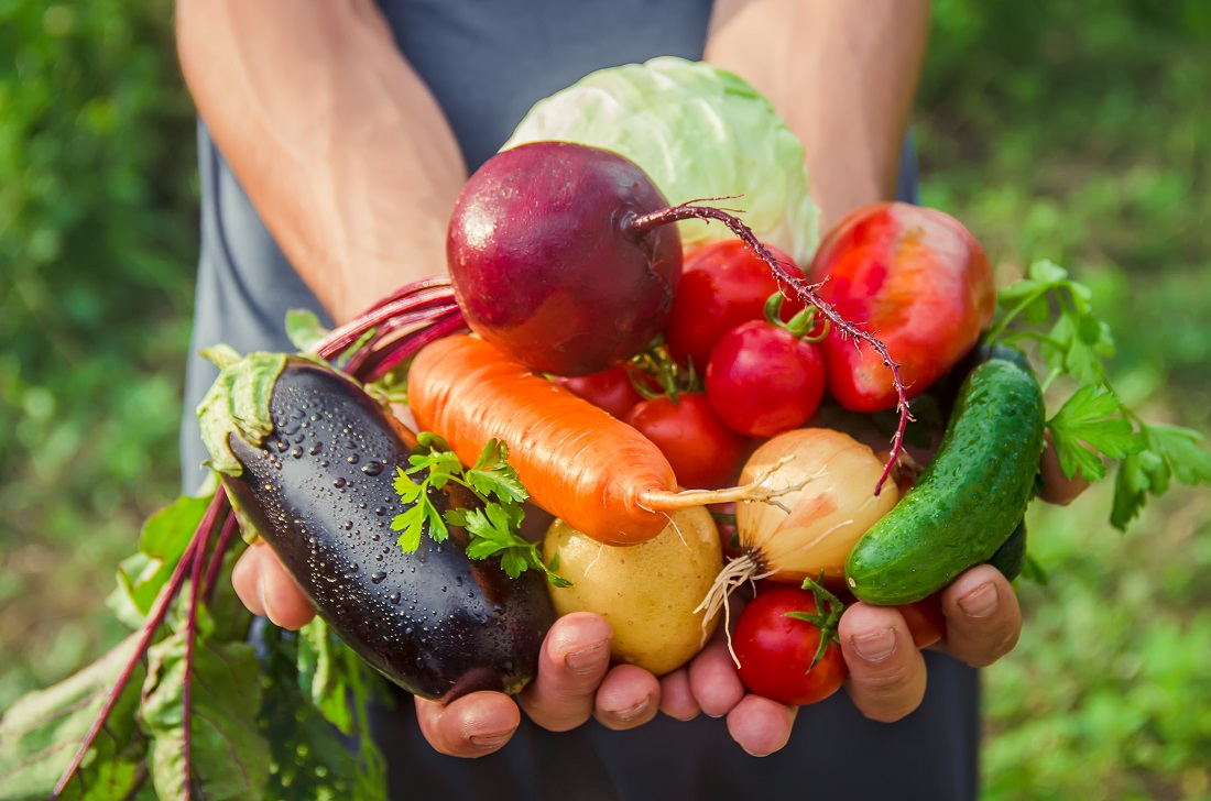 Agrihoods: The Intersection of Sustainable Farming & Real Estate